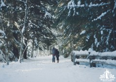 Natural light portrait of a couple standing on a snow covered path surrounded by snow covered fir trees