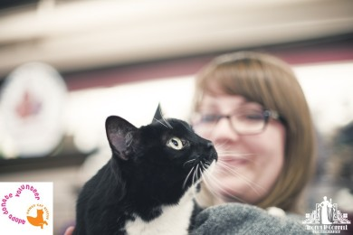 Black and white cat with green eyes being held at a pet adoption event