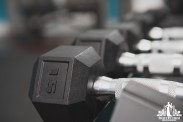 Image of hand weights in a personal trainers studio
