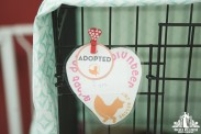 Sign showing a cat has been adopted at a pet adoption event