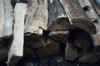 Firewood chopped and stacked ready for a campfire
