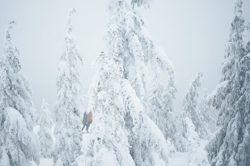 Two people snowshoeing emerging in between snow covered trees at the Dog Mountain lookout in Vancouver, BC