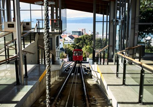 View of the Wellington Cable Car heading back down the hill with the view of Wellington Harbour in the background