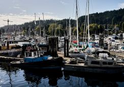 Image of boats in the marina at Gibsons on the Sunshine Coast, BC