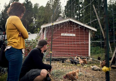 Image of a couple watching free range chickens at Persephone Brewing Company on the Sunshine Coast, BC