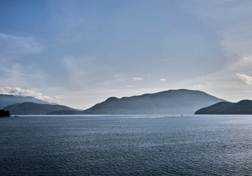Image of an island of logs floating in the water of an inlet heading back away from the Sunshine Coast, BC